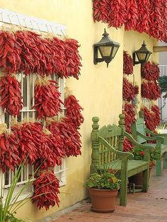 drying chilis, old town, Albuquerque, New Mexico. I've lived here for 40 years. Have fun walking around Old Town. New Mexico Style, New Mexico Usa, New Mexico Homes, Mexico Food, Beautiful World, Beautiful Places, Beautiful Gardens, Places To Travel, Places To Go