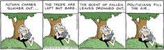 'Tis the season.   Read B.C. #comics @ http://www.gocomics.com/bc/2015/11/11?utm_source=pinterest&utm_medium=socialmarketing&utm_campaign=social   #GoComics #webcomic