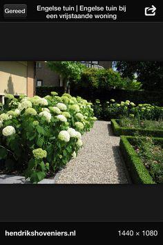 Mooi, die witte hortensia's