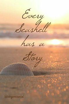 Every Seashell has a Story Sand 'N Sea Properties LLC, Galveston, TX #sandnseavacation #vacationrental #sandnsea
