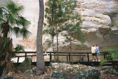 The Art Gallery Walk is a grade 3 Return hike located in Carnarvon National Park Queensland. The hike should take approximately to complete. Grade 3, Hiking Trails, Mount Rushmore, National Parks, Art Gallery, Walking, Australia, Adventure, Mountains