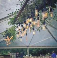 A touch of greenery softens these industrial style fixtures.  Edison Bulb Chandelier from Get Lit, greenery by Cheryl Ann Kast, Tenting by Party Reflections.