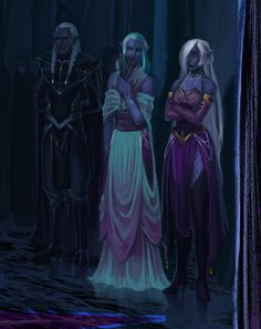 Elite Lunari (moon elves) who are kin to the 5 Elders in charge often wear slightly more flashy outfits, sort of like these. Although nothing too flashy.