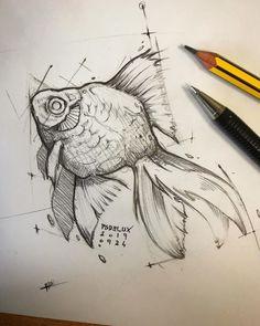 Fish Drawings, Pencil Art Drawings, Art Drawings Sketches, Pencil Sketching, Sketch Drawing, Animal Sketches, Animal Drawings, Jellyfish Drawing, Watercolor Jellyfish