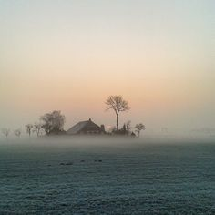 « Good morning! Such a beautiful one.... #morning #sunrise #farm #fog #mist #netherlands #nature #countryside »