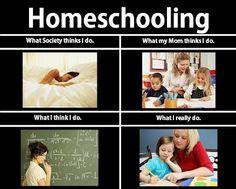 Homeschool What i really do meme