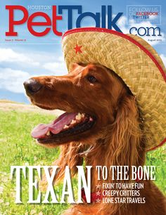 pet talk Animal Magazines, Magazine Covers, Supermodels, Pup, The Incredibles, Dogs, Animals, Fashion, Moda