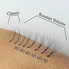 Eyelash Extensions Singapore - (Signature) Russian Lash in 2019 Fake Lashes, False Eyelashes, Eyelash Extensions Styles, Russian Eyelash Extensions, Volume Lash Extensions, Elf Make Up, Russian Lashes, Lash Quotes, Lashes Logo