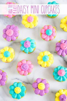 Daisy Mini Cupcakes – your favorite mini cupcakes decked out for spring in colorful buttercream daisies!