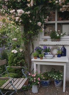 Love this, so many things to enjoy....climbing rose, so many cute things on the table, container planting below window and more on the floor. Then sit awhile to enjoy everything!! Love all this, I always pin what I love!!