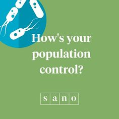 Improve your Gut Bacteria. Sano co-founder, Nutritionist, and creator of Sano Diploma in Applied Nutrition , Dale Pinnock , shares his 5 tips. Dale Pinnock, Gut Bacteria, Gut Health, 5 Ways, Improve Yourself, Nutrition, Facts