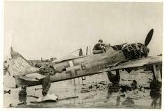FalkeEins - the Luftwaffe blog: Fw 190