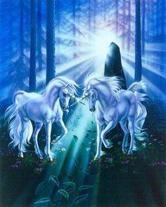 Dawn Of The Unicorns sue dawe