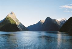 milford wilderness, new zealandM by RobiNZ on Flickr