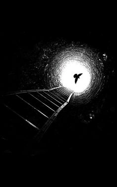 Shadow Photography, Dark Photography, Black And White Photography, Black And White Art Drawing, Black Paper Drawing, Shotting Photo, Black Aesthetic Wallpaper, Dark Wallpaper, Light And Shadow