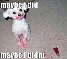Maybe I did, maybe I didn't...