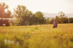 1 year old photo session in a field at sunset. Golden hour photography. Highlands ranch Colorado
