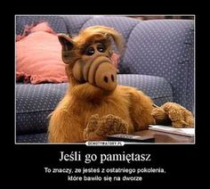 ALF - I think this is my all time favorite show! Remember, Alf came to us from the planet Melmac. I still have my little stuffed Alf. Arnold Et Willy, John Rambo, Living Puppets, Critique Film, Emission Tv, 90s Tv Shows, Back In My Day, Famous Cartoons, 90s Cartoons