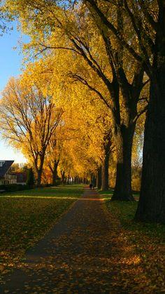 Düsseldorf Rheinland
