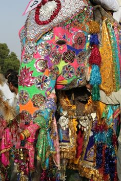 Elephant Festival, Jaipur, India. I want to go so badly.