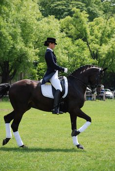 Andar a cavalo                                                       …