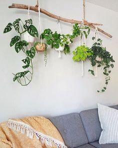 Room With Plants, House Plants Decor, Plant Decor, Living Room Decor, Bedroom Decor, Wall Decor, Deco Zen, Creation Deco, Ideias Diy