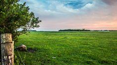 Pasturelands. Photo by Roger Dueck.
