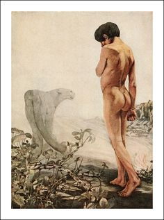 The Jungle Book by Rudyard Kipling. Illustrated by Maurice and Edward J. Detmold. Published 1913 by Century in New York.