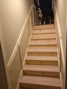 Stairtek 1 In. X 11.5 In. X 36 In. Unfinished Solid Builder Grade Red Oak  Tread BTROC1136   The Home Depot