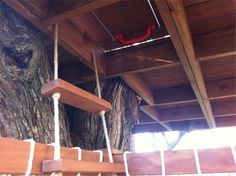 custom treehouse - trap door!
