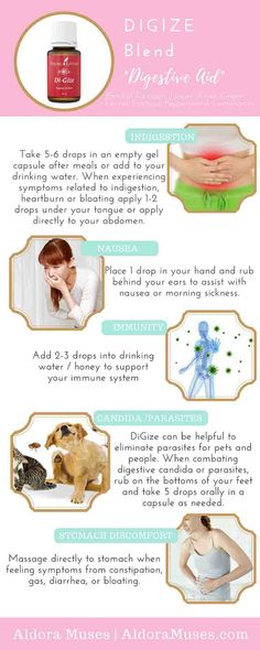 New how to use essential oils young living natural remedies ideas Digize Essential Oil Young Living, Essential Oils For Candida, Essential Oils Guide, Natural Essential Oils, Essential Oil Blends, Natural Oils, Natural Healing, Young Living Oils, Young Living Digize