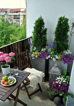 Flores para decorar balcones. Plantas y flores para balcones coloridos. #flores #decoraciondebalcones