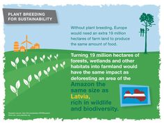 Without plant breeding, Europe would need an extra 19 million hectares of farm land, causing major deforestation.