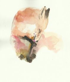 FOX! watercolor, love it