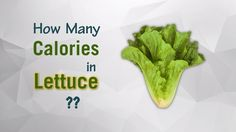 Healthwise: How Many Calories in Lettuce? Diet Calories, Calories Intake & Healthy Weight Loss by EnViata @ https://youtu.be/kzsmO3pawyo