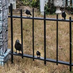 Everything you need to know to create a spooky Halloween yard haunt in your front yard. Diy Halloween Pillars, Diy Halloween Graveyard, Halloween Fence, Halloween Outside, Halloween Tombstones, Creepy Halloween, Outdoor Halloween, Halloween Decorations, Halloween Costumes