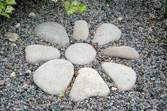 Rocks in the Garden