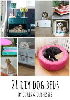 21 DIY dog beds