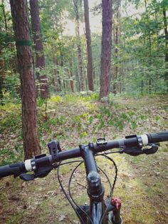 Bike&Forest