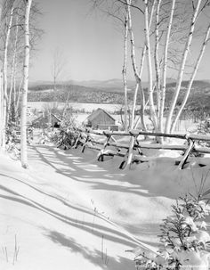 Image detail for -USA, New Hampshire, Winter scene