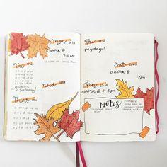 Bullet journal weekly layout, Autumn drawings, leaf drawings. @lcstudies