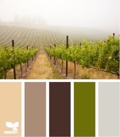 "vineyard tones-damn green. house is talking but I dont want to hear ""green"" ugh"