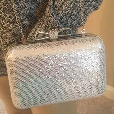 """Beautiful Lord N Taylor silver Clutch Long chain 22"""" drop. Purse measures 5.5"""" long by 4 high, 2"""" deep. Beautiful silver purse. Used once! Excellent condition La Regale Bags Clutches & Wristlets"""