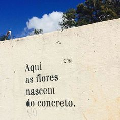 #Repost @kikapinheiro ・・・ Brasília, DF. #bsb #olheosmuros #paredesurbanas #artederua #ceuazul http://ift.tt/2sI3zRF
