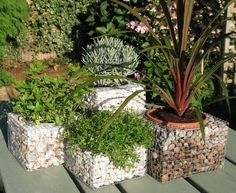 gabion baskets gabion planter boxes garden decorating ideas