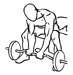 Seated Close Grip Concentration Curls with Barbell 1