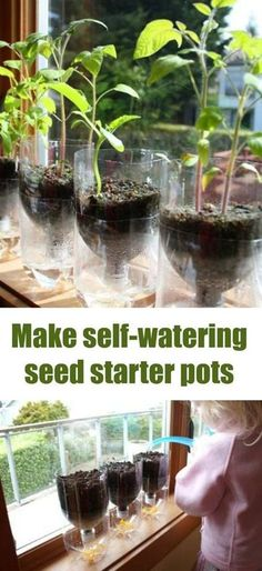 Start your seeds and make sure they get the exact water they need with this easy to make self-watering seed starter pots DIY. I love recycling things for use in the garden. (herb planters self watering) Hydroponic Gardening, Container Gardening, Organic Gardening, Gardening Tips, Hydroponic Systems, Gardening Courses, Gardening Vegetables, Gardening Supplies, Herb Garden