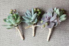 Succulent Boutonnieres/Button holes