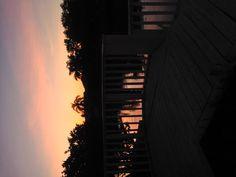 My backyard Sunset, St Pete