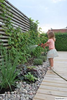 Garden Screening Ideas - Screening could be both decorative and practical. From a well-placed plant to maintenance complimentary fence, below are some imaginative garden screening ideas. #gardenscreeningideas #gardenideas #privacylandscaping